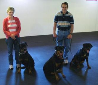 Diana and Ron with the 3 Rottweilers