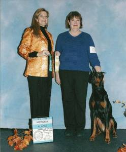 rescue doberman trained for AKC Rally obedience and AKC working dog titles Salem NH