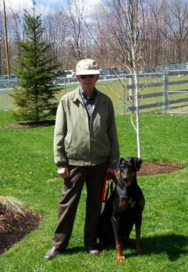 Dog training for Doberman in Derry NH