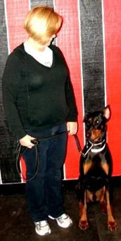 Doberman Pinscher dog training in New Hampshire with Fortunate K9